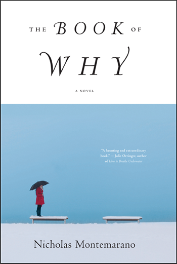 Nicholas Montemarano: The Book of Why