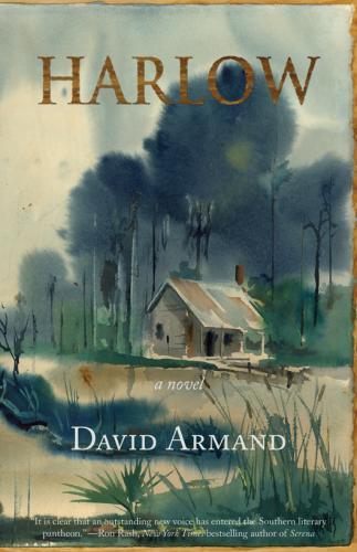 David Armand: Harlow