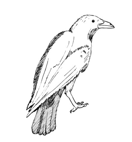 One-Legged Crow