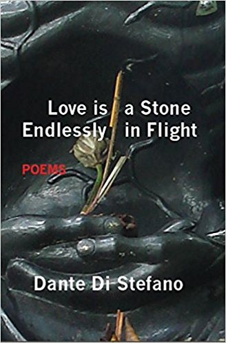 Love Is a Stone Endlessly in Flight: A Correspondence with Dante Di Stefano