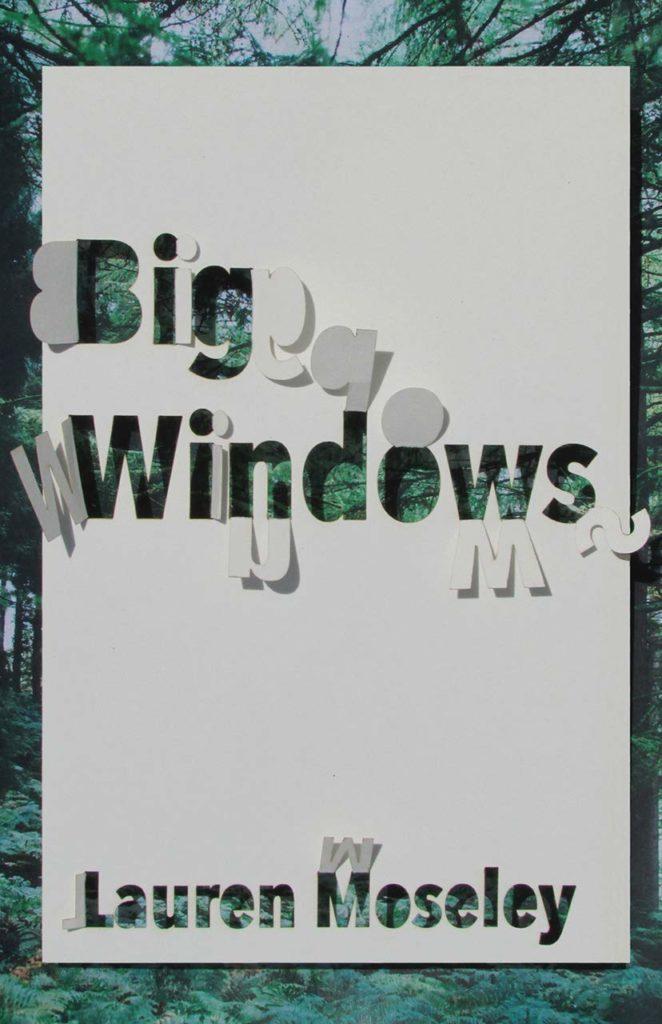 Big Windows book cover